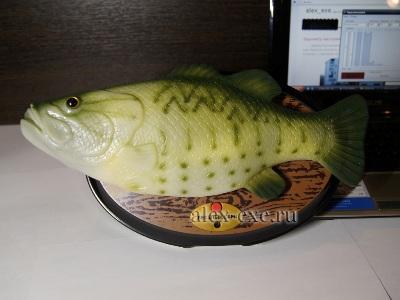 Говорящая и поющая рыба